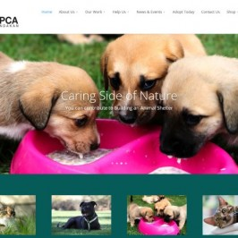 SPCA Sandakan